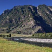 В долине реки Чулушман :: Геннадий Мельников
