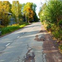 Асфальтировали дорогу-не хотелось брёвна откатывать :: Валентин Кузьмин
