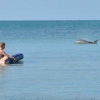 встреча в море :: Мария Климова