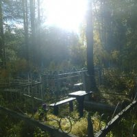 Солнце пробилось на кладбище :: Николай Туркин