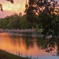 торжественный закат :: Елена