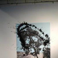 Дерево с кляксой. Современное искусство Китая. :: Светлана Калмыкова