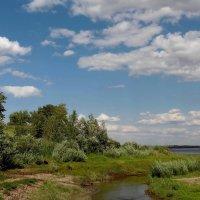 Летний пейзажъ :: Dr. Olver  ( ОлегЪ )