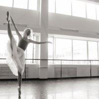 Балерина :: Андрей Вязовов