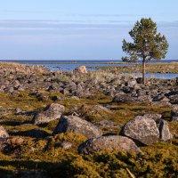 Море и камни :: Валерий Князькин