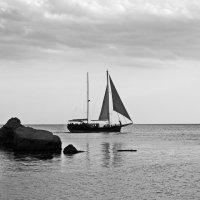 Черное море России :: Алексей Михалев