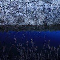 синяя река :: Evgeny