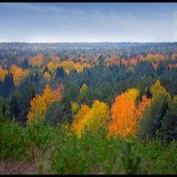 Краски осени :: Борис Гуревич