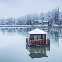 Одиночество :: Дмитрий Ступников