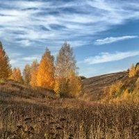 Апогея осени :: Владимир Макаров