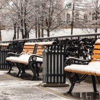 После снегопада :: Роман Топычканов