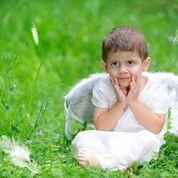 Ангел :: Олеся Горельникова