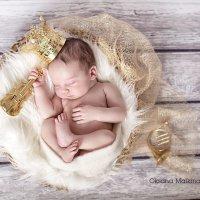 маленький принц :: Oksana Malkina