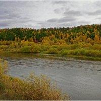 Река Ухта :: Виктор Бондаренко