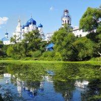 поездка в Боголюбово :: Сергей Цветков
