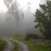 здравствуй, осень... :: liudmila drake