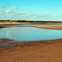 Летний берег Белого моря. Солза. Большой отлив :: Владимир Шибинский