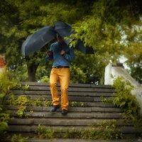 Осенние дожди не страшны, если у тебя два зонта ))) :: Ольга Гребенникова