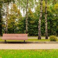 В парке :: Дмитрий Крыжановский