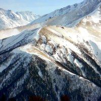 Заснеженные горы. Краснодарский край :: Юлия Жогина