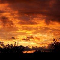 Небесный пожар :: Akira Shiro