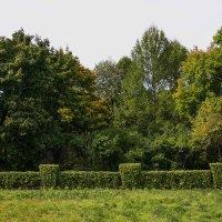 Ботанический сад :: Natalia SabliNA