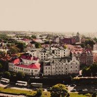 Выборг в тумане :: Константин Шумихин