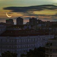 убывающая луна :: татьяна