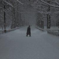 зима :: Тахир Мурзаев