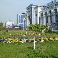 Мой город :: Диля Урыксыбаева