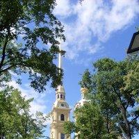 Петропавловский собор. Санкт-Петербург :: Мария Синельщикова