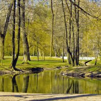 В парке :: Николай Климович