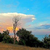 Черноморский пейзаж :: Оксана Парубина