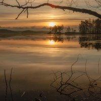 Прозрачное утро :: Евгений Плетнев