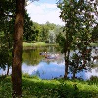 В парке. Белое озеро. :: Анастасия Белякова