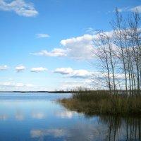 Озеро Малое. :: Александр Шмалёв