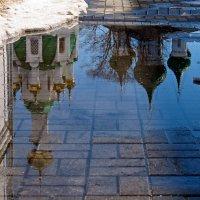 Весенние отражения :: Николай Белавин
