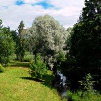 В парке. :: Сергей Исаенко