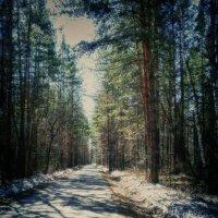 Весенне шоссе. :: Navaho Indeec