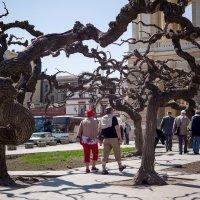 Апрельские туристы... :: Вахтанг Хантадзе