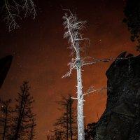 Небо умирающей Луны :: Артур Миханев