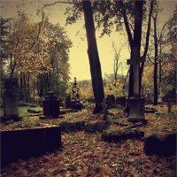 Новодевичье кладбище :: Мария Синельщикова