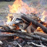 огонь :: елена бардыш