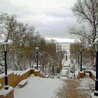 Каменная лестница зимой :: Оксана Парубина