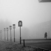 В городе туман... :: Елена Перевозникова
