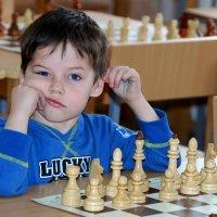 Юный шахматист. :: Альберт Куров