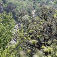 горная дорога в весенний день.. :: valeriy g_g