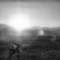 Пустынный странник :: Алексей Соминский