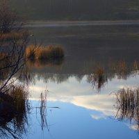 Осень :: Любовь Овсянкина