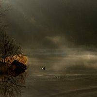 Туман :: Любовь Овсянкина